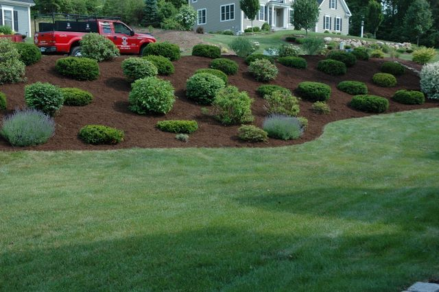 Photos Of Hillside Landscaping : Landscaping hillside for the home
