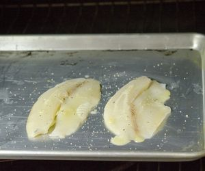 How to cook tilapia fillets in the oven for How to bake tilapia fish in the oven
