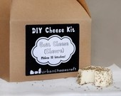 Make your own cheese!