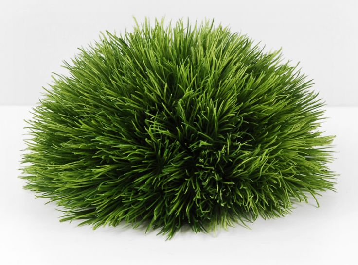 Grass mound centerpiece caddyshack party ideas pinterest for Mounding grass
