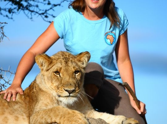 Travel to Majestic Victoria Falls in Zimbabwe. Spend your time supporting a Lion Rehab programme. Click pic for more info.