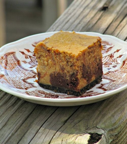 Chocolate Pumpkin Cheesecake Bars | For The Love Of Cheesecake