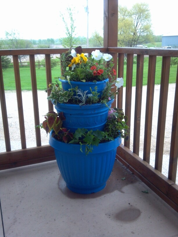 The gallery for glow in the dark spray paint flower pots for Recycled flower pots