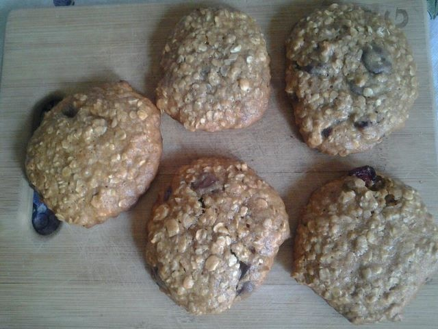 Dr. Coad's Oatmeal Cookies with Chocolate Chips and Dried Cranberries ...