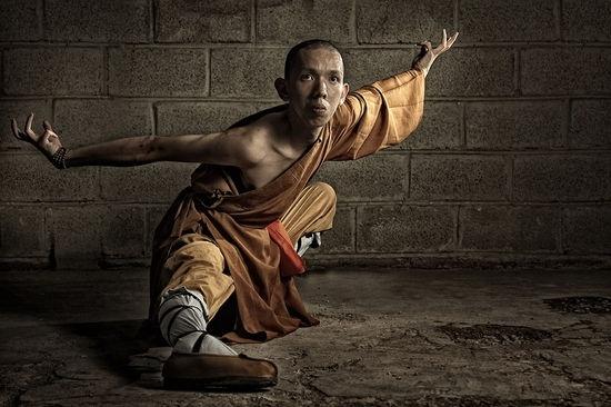 Kung Fu Eagle Style ~Golden Eagle S...