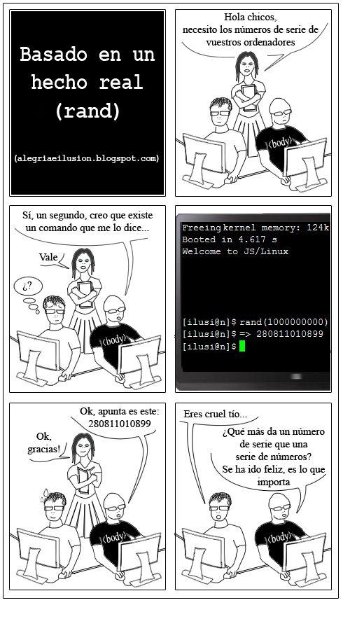 programador y becaria