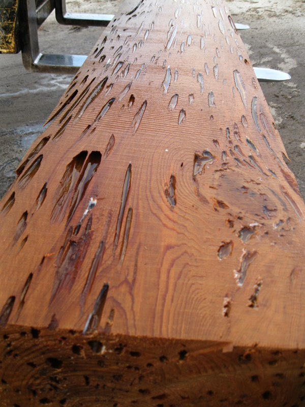 Pin by Jud Boyd on Dead Head Cypress or Pecky Wood | Pinterest