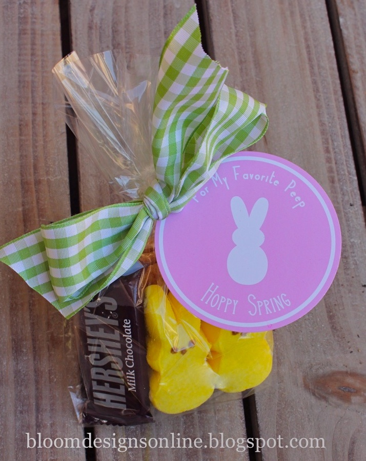 Peeps s'mores - perfect for our Easter camping weekend