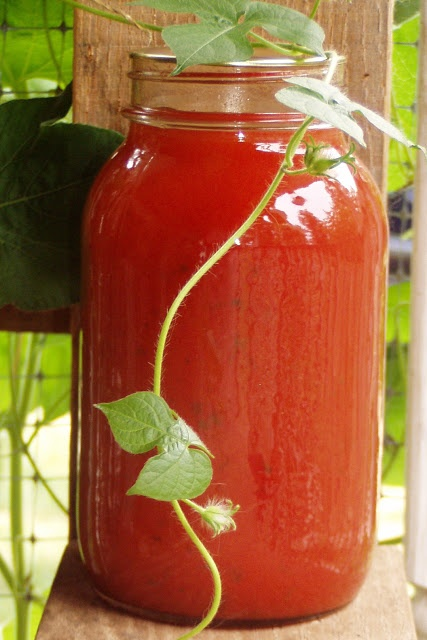Homemade tomato juice. I buy mine from the store, but if you have a ...
