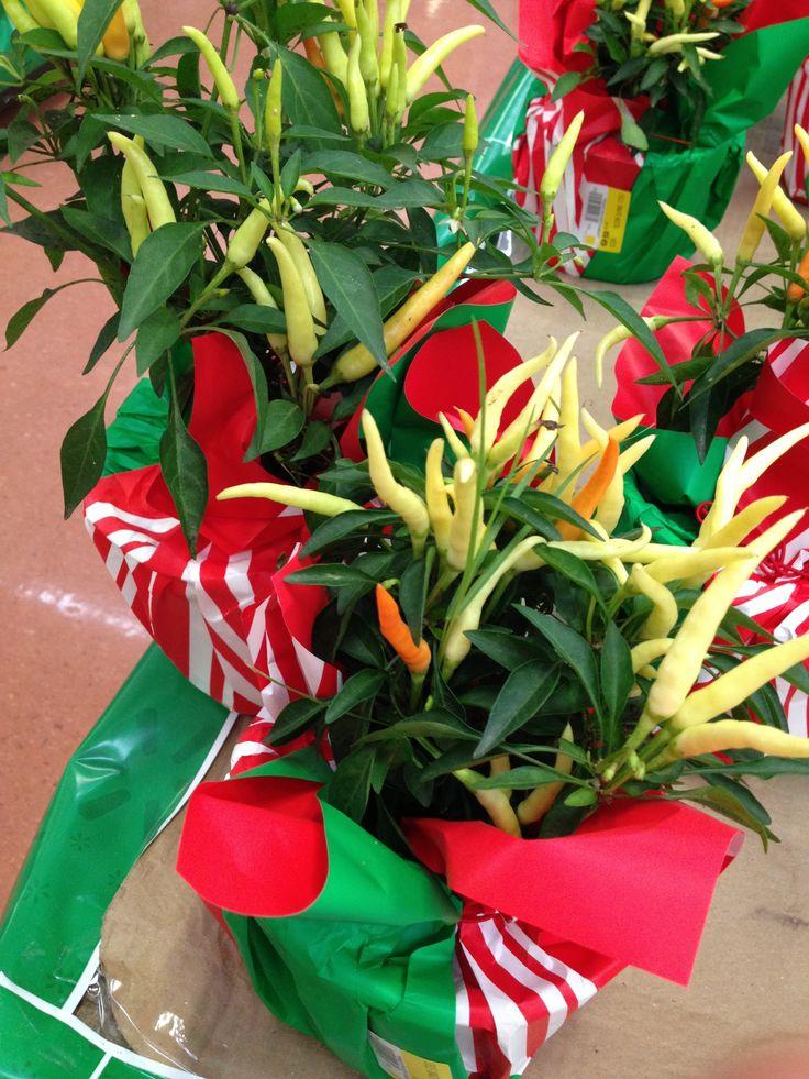 Decoracion Septiembre Mexico ~ Pin by Noemi on Mis recetas en Haydetodo com My recipes in Haydetodo