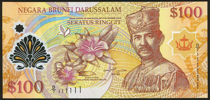 An image of the B$100. #100 #Currency #Brunei