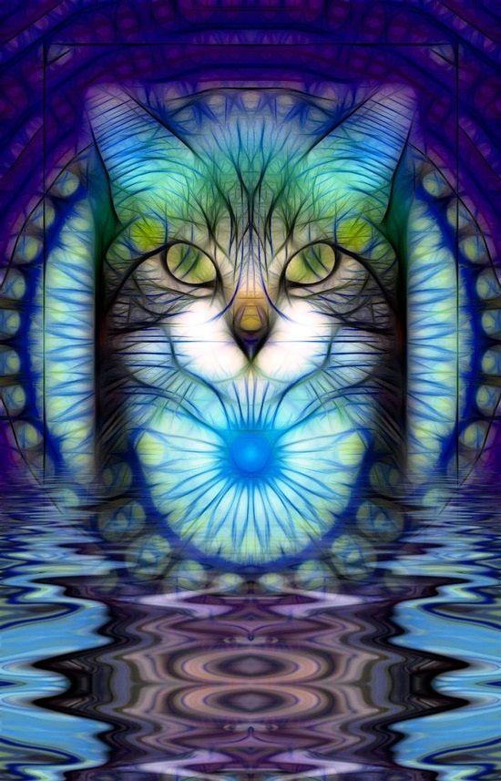 tiger fractal cats e - photo #35