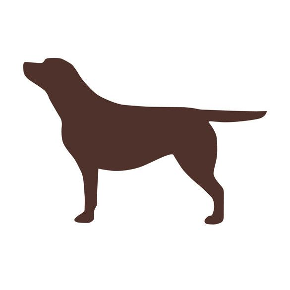Labrador Silhouette Vehicle Sticker - Chocolate – Labradors ...