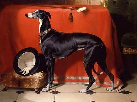 Italian Greyhound Queen Victoria Eos, Queen Victoria's ...