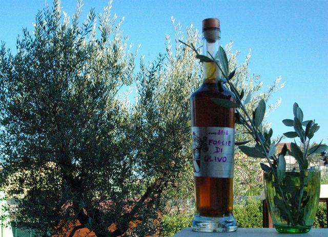 Liquore di foglie di olivo