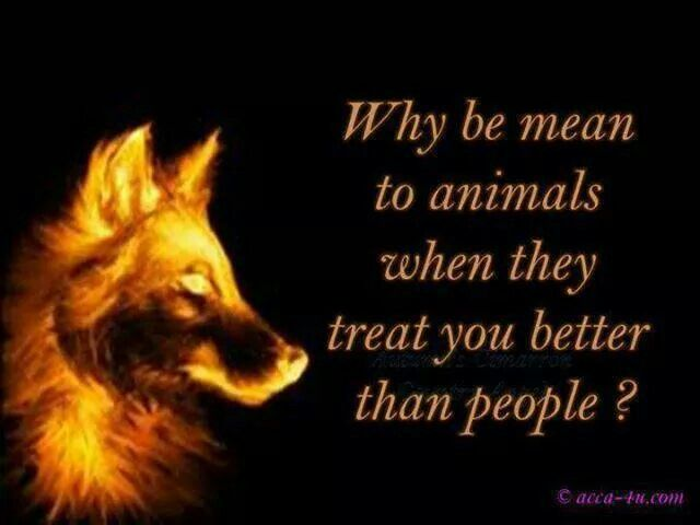 why should animals treated respect Should animals be treated equally as yes animals should be treated humanely, they should not expereiece pain and they should be treated with respect.