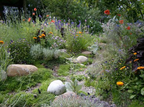 Wild Backyard Ideas : natural landscape  ideas for work  Pinterest