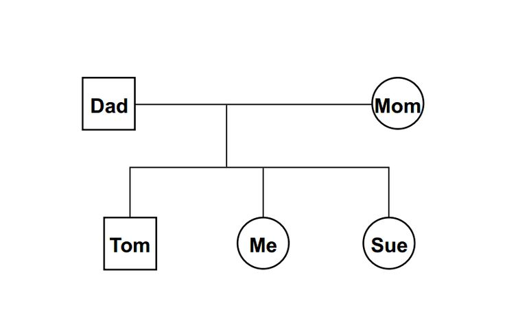 Sample Chart Templates 3 generation pedigree chart template : Blank Genogram To Fill In : Share The Knownledge