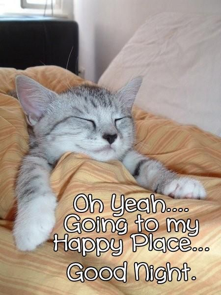 Oh yeah, going to my happy place, good night. Cat in bed