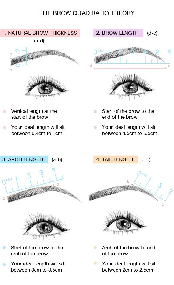 Eyebrow Shapes How to Get the Best Brows for Your Face Face - one week notice