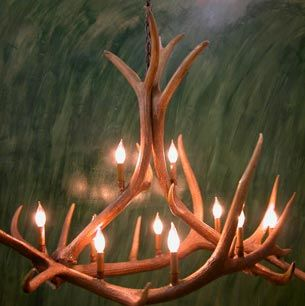 antlers in the tree by who goosed the moose