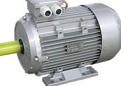 Tefc Squirrel Cage Induction Motors Electrical Goods