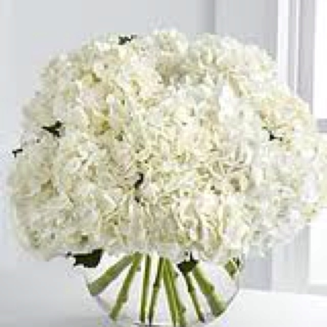 White carnations centerpieces pinterest