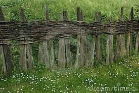 Image Result For Cheap Fence
