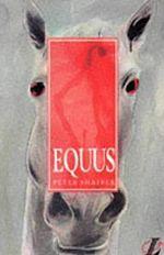 Equus Play Analysis