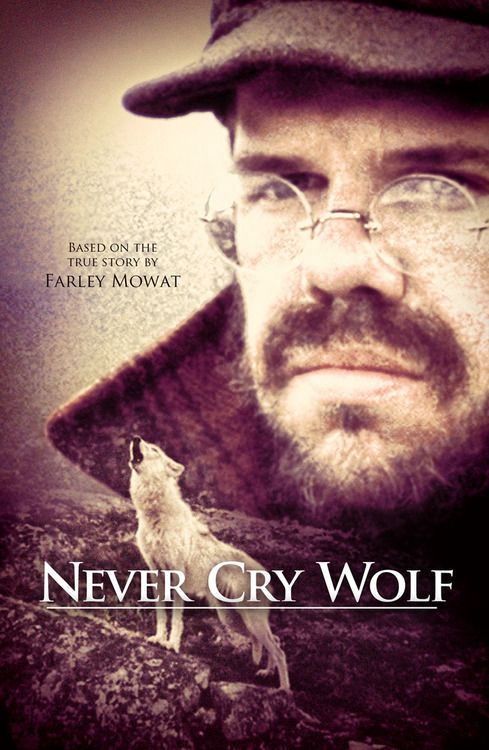 cry wolf movie essay