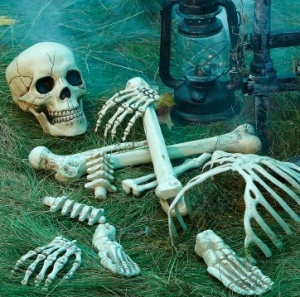 Skeleton yard decorations halloween pinterest for Bag of bones halloween decoration