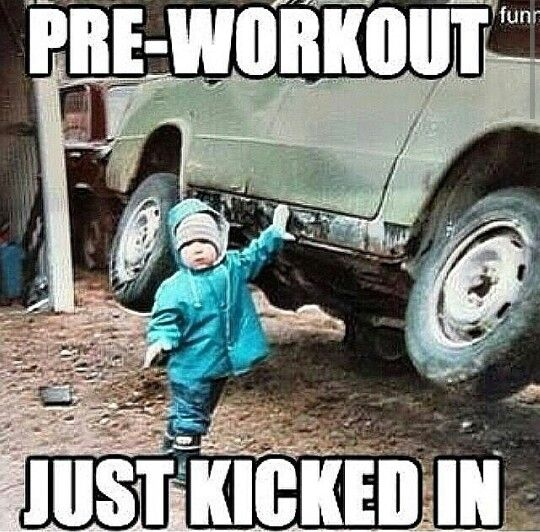 Funny Pre Workout Meme : Gym humor funnies pinterest