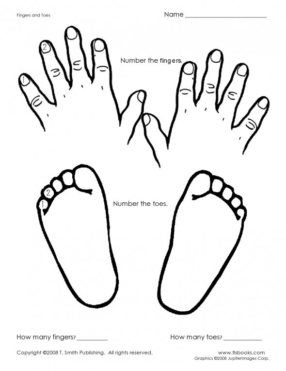 Fingers-And-Toes : Preschool : Pinterest