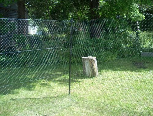 Deer Fence Kits For Gardens And Orchards Garden Pinterest