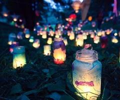 lights pretty lights pminichiello