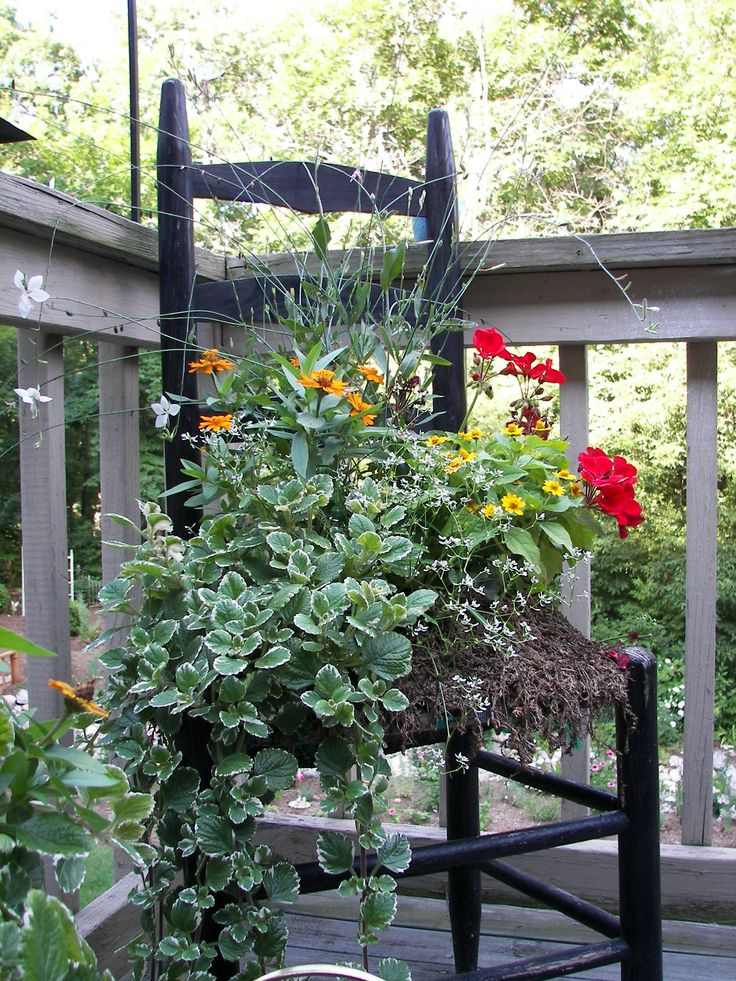 Container garden ideas outdoors pinterest for Container gardening ideas