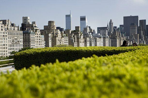 New York Ratification Essay