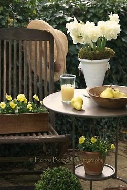 ....Relaxing spot in garden