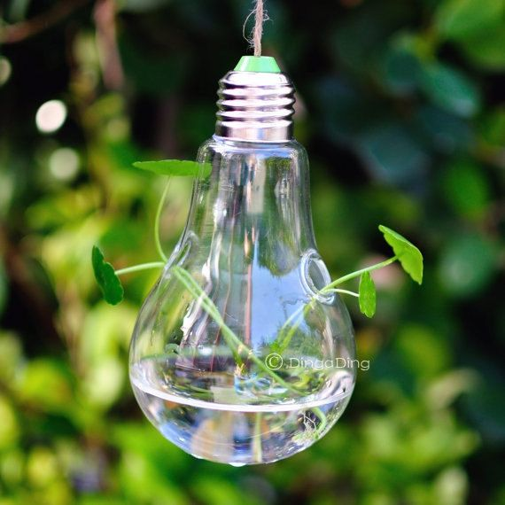 Light Bulb Glass Hanging Planter Container Vase by DingaDingUK, £10 ...
