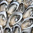 Roasted Oysters with Shallots and Herbs via The Daily Green