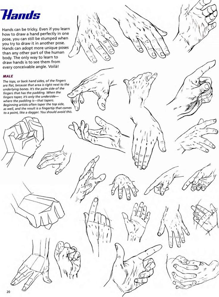 Explicación teórica de las manos