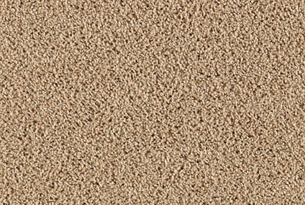 One of our best selling smartstrand carpets-Perfect Mix