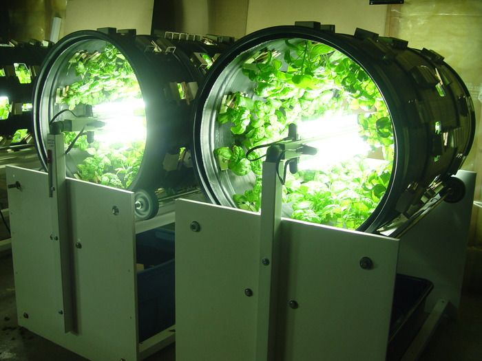 omega garden aquaponics