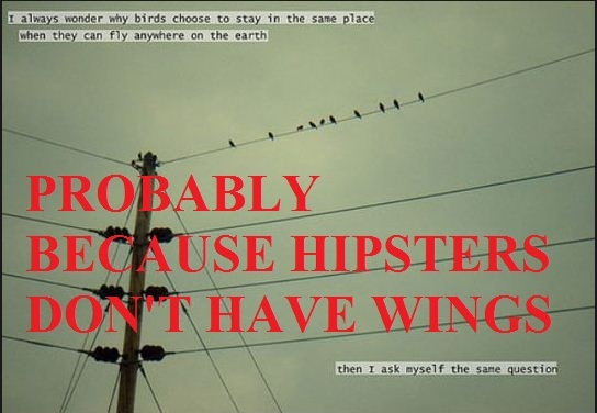 hipster quotes funny - photo #6