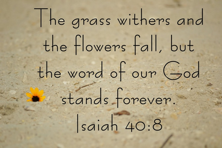 Image result for Isaiah 40:8