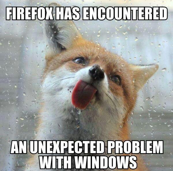 Window licker just makes sense pinterest for Window licker meme