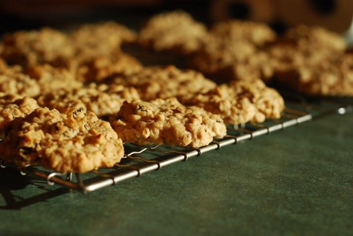gluten free vegan oatmeal raisin cookies | Gluten Free Food | Pintere ...