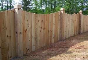 pretty privacy fence!