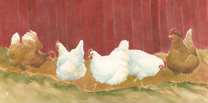 Chicken Prints | Prints, Original Fine Art Watercolor Paintings ...