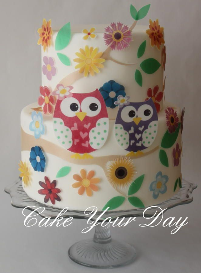 Sweet Owl Cake  Cakes & Cake Decorating ~ Daily  ~ 061510_Cake Decorating Ideas Owls